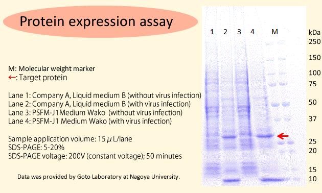 Insect Cell Culture Medium PSFM-J1 Medium Wako, Liquid